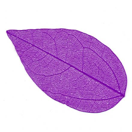 Skeleton Leaves Purple 4-6 cm, 10 pieces  (24103)